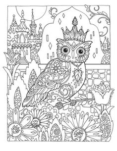 Creative Haven Owls Colouring Book by Marjorie Sarnat ~ Owl King