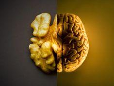 Lo sapete cos'è la Signatura Rerum? E' la teoria per la quale ogni alimento cura l'organo del corpo al quale assomiglia... ed è proprio vero!