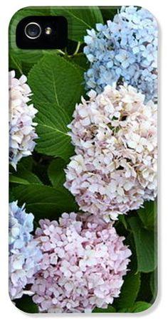Lovely hydrangeas  iPhone case by Danielle Groenen  #hydrangea #hydrangeas #floraliPhonecases #florals #gifts #daniellegroenen