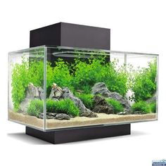 http://www.ebay.com/itm/121970767679?ssPageName=STRK:MESELX:IT&_trksid=p3984.m1555.l2649