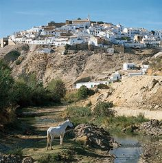 A village in  Andalusia, Spain, showing housing typical of the region. Also Andalusia geography link
