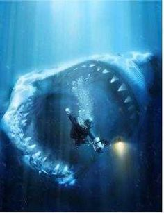 The megalodon...insane to think about. I just love sharks! And obviously shark week!!