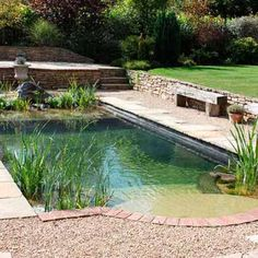 Super simple natural pool