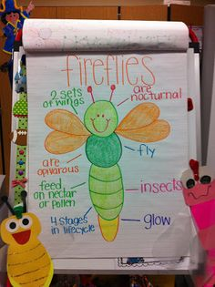 Several insect anchor charts and activities: Welcome to Room 36