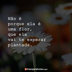 Frases Instagram, Haha, Crushes, Believe, Memes Gifs, Thoughts, Cool Stuff, Words, Quotes