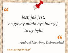 Cytat: Jest, jak jest, bo gdyby miało być inaczej, to by... - Zamyslenie.pl