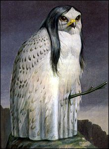 La Lechuza- South American folklore: an old woman witch that can turn into a huge barn owl and swoop down and prey on young men.