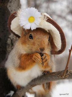 Do you like my new Easter bonnet?