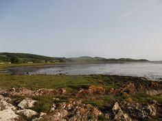 An evening bay wander in July, at a quiet spot