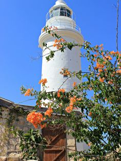 Paphos Lighthouse, Cyprus- by andy.63