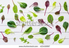 Pattern design of various salad leaves on white wooden background / Flat lay green salad leaves on white background