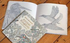 colouring book 425x265