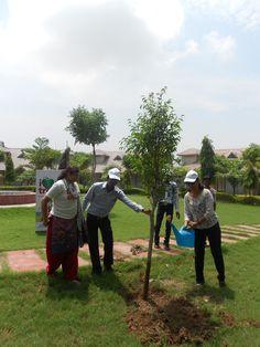 #SHRI Group #Save #Tree #Save #Earth