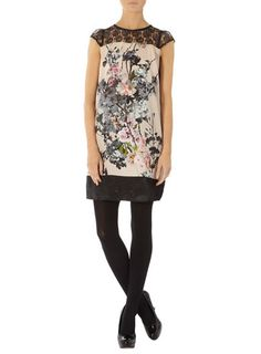 Blush blossom lace dress - Dorothy Perkins