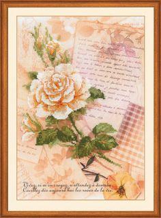 Письма о любви. Роза