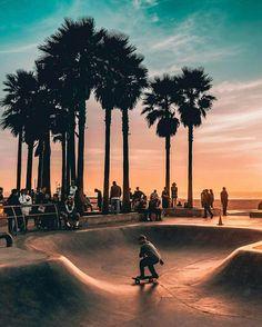 Nature, paisagem, natureza - Venice Beach