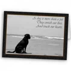 The loss of a pet can be devastating to its owner and family and yet it leaves many at a loss for words of comfort.    Sending a Pet Sympathy Card...