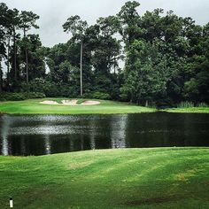 Arcadian Shores Golf Club, Myrtle Beach, South Carolina - Myrtle Beach has close to 100 golf courses for your pleasure and plenty of good deals to go with them!   (Photo via Instagram by @mattest75)