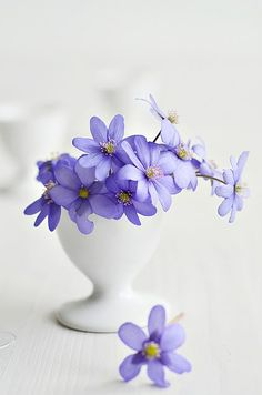 So pretty for an Easter table decoration - delicate flowers in an egg cup