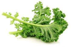 Kale is a highly nutritious vegetable. It has a number of different health benefits associated with its consumption. Discover why you should consider including kale in your diet.