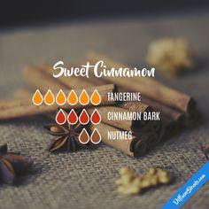 Sweet Cinnamon - Essential Oil Diffuser Blend