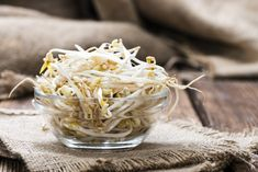 How to Freeze Bean Sprouts Bean Sprout Soup, Bean Sprout Recipes, Bean Sprouts, Fresh Bean Recipe, Freeze Beans, Recipes Using Beans, Alfalfa Sprouts, Hot And Sour Soup, Recipes