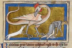 This basilisk is totally losing its shit with the ferret questioning its decision to murder that guy. | 44 Medieval Beasts That Cannot Even Handle It Right Now