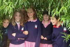 Greenery promotes mental development in primary children / RHS Campaign for School Gardening