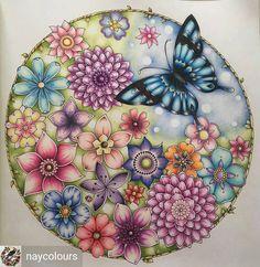 @Regrann from @naycolours - #johannabasford #magicaljungle #prismacolors #polychromos #fabercastell #adultcoloringbook #addictedtocoloring #adultcolouring #boyan_bayan #desenhoscolorir #prazeremcolorir #livrocoloriramo #creativelycoloring #beautifulcoloring #boracolorirtop #colorindomeujardimencantado #majesticcoloring #colorindolivrostop #coloring.masterpiece #coloring_secrets #artecomoterapia