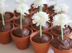 Cupcakes plantados en Material de decoración para cupcakes y magdalenas