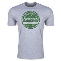 South Africa Springboks Amabokoboko Premier T-Shirt (Gray)