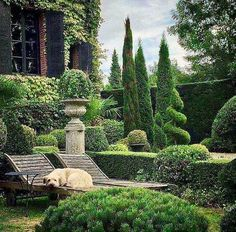 IN THE GARDEN WITH MILO, Normandy. I adore this all green garden with its beautifully kept topiary. It belongs to one of my very favourite… European Garden, Italian Garden, Formal Gardens, Outdoor Gardens, Outdoor Sheds, Garden Design Pictures, Formal Garden Design, Topiary Garden, Garden Art