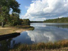 Batsto history lake~~