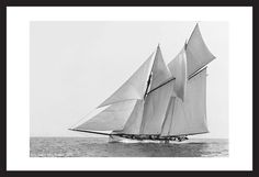 Art Prints for Home and Office - America's Cup Schooner Mayflower 1891 - black and white antique sailing art print restoration