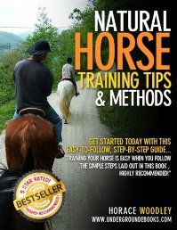 Natural Horse Training Tips & Methods; Horse Training Tips: Horse Training Method You Won't Find in Other Horse Training Books by Horace Woodley. How do you train your horse? Are you just starting out or are you looking for different methods to find the best one to use with your animals? Look no further than this informative book designed to get you comfortable in training your horse. Click The Pic To read More!