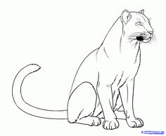 Drawing of a black panther 7 best panther images on panther black Easy Cartoon Drawings, 3d Drawings, Animal Drawings, Black Panthers, Black Panther Drawing, Panther Images, Valentines Day Coloring Page, Rainforest Animals, Cat Coloring Page