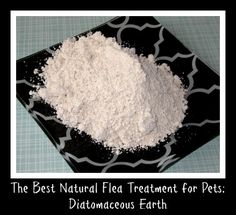 Diatomaceous earth is one of the best all natural flea treatments for dogs and cats. It is food grade and completely safe to reapply regularly.