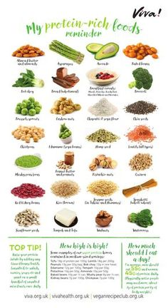 Protein Nutritional Poster – Gifts for Life – Viva! Protein Nutritional Poster – Gifts for Life – Viva! Diet And Nutrition, Protein Nutrition, Protein Rich Foods, Nutrition Poster, Vegetarian Protein Sources, Best Sources Of Protein, What Foods Have Protein, All Protein Diet, Holistic Nutrition