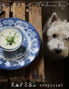 http://kulinarna-fuzja.blogspot.com/2014/05/wiosna-tokrem-z-biaych-szparagow-i.html