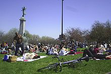 Tam tams Jacques Cartier, Ontario, Montreal Ville, Montreal Canada, Royal Park, Dj Booth, People Sitting, Over The Years, Gazebo