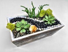 Distressed Wood Succulent Planter Terrarium with Citrine Crystal