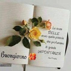 Flower Prints, Good Morning, Place Card Holders, Grande, Cristiani, Anna, Ely, Night, Islam