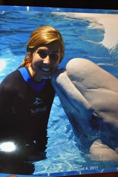 Swimming with Beluga Whales.