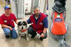 A Hardware Store Hired This Man And His Support Dog When Others Wouldn't