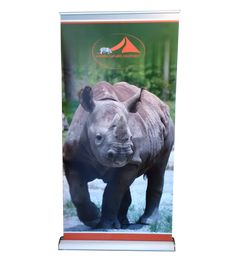 The pop-up function sets you free to quickly set up and pack up the product as per the usage. Display Solution offers a wide range of easy-to-use trade show banner stands. Browse our inventory of high-quality retractable and #rollupbannerstands today! #banner #stands #bannerstand #retractablebannerstands #popupbannerstands #lbannerstands #telescopicbannerstand