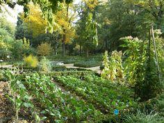 Gardening:Sunny Botanical Gardens Design Tricks Real Estate Gardening Decor Home Exterior Decoration House Garden Ideas (34) 8 Design Tricks From Sunny Botanical Gardens