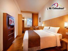 En nuestro HOTEL IBIS CHIHUAHUA, le ofrecemos modernas y acogedoras habitaciones con todas las comodidades y servicios que usted necesita. Comuníquese con nosotros a los teléfonos 01(800)1110098 o al 01(614)2015100 y visite nuestra página para reservar hoy mismo. Nada mejor que un gran hotel para una gran ciudad. http://www.ibis.com #visitachihuahua