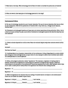 essay guided writing pattern