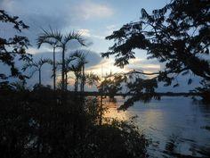 Cuyabeno Amazon Reserve, thankts to Hannah