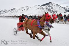 Cutter Races in #JacksonHole #Wyoming by @Stephen McElhinney Williams | One of the featured events of Jackson Hole WinterFest.